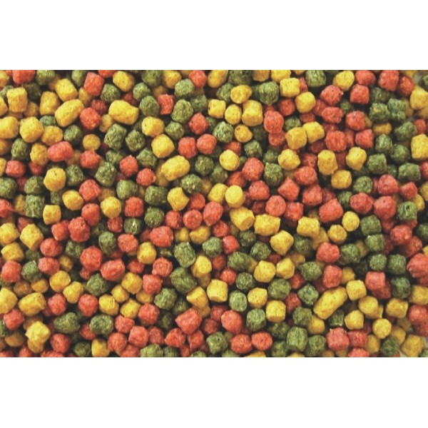 KOIPROFESSIONAL MIX COLOR 6MM – 1 KG